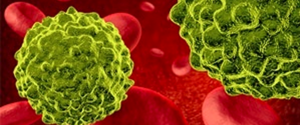 bacteria-2